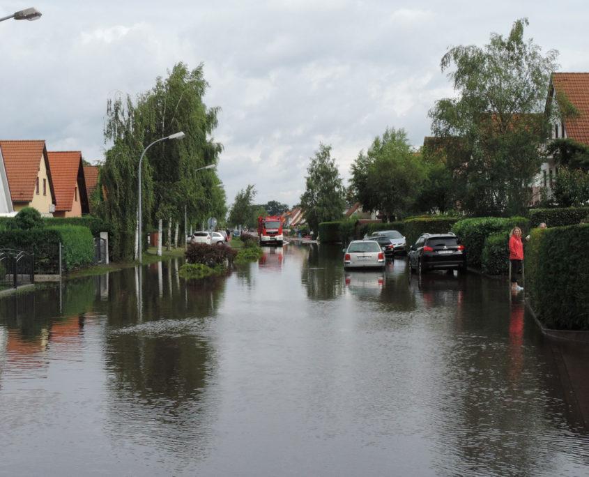 Birkenallee und Birkenhof nach dem großen Regen (Foto: Hajo Eckert)
