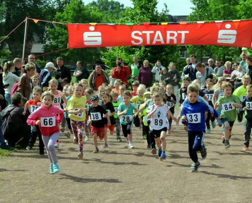 Strassenlauf 2017: Lauf Bambinis (Foto: Hajo Eckert)