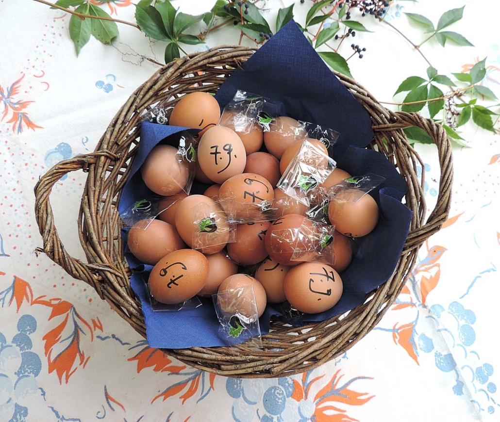 Dorfstraße 1: Frische Eier vom Bauernhof und den Leegebruch-Pin gab es als kleine Überraschung für alle Teilnehmer des Rundgangs (Foto: hajo)